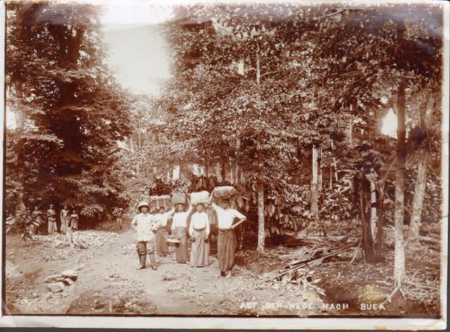 Alte Fotographie aus Kamerun: Auf dem Wege nach Buea.