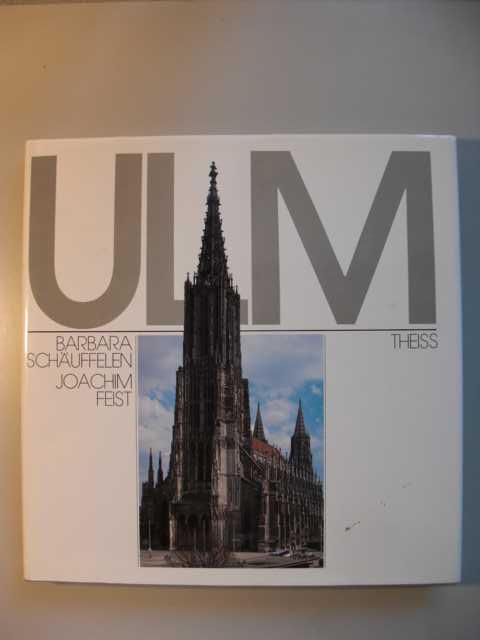 Ulm : Porträt einer Stadtlandschaft von Barbara Schäuffelen ; Joachim Feist : erste Auflage :