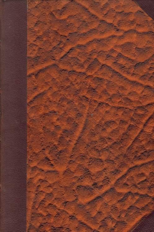 J. B. Staub. Ein Edelmensch in schlichtestem Gewande. Zweite Auflage