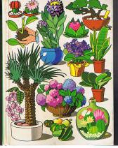 Der Zimmergärtner. Das große Buch der Zimmer- und Balkonpflanzen