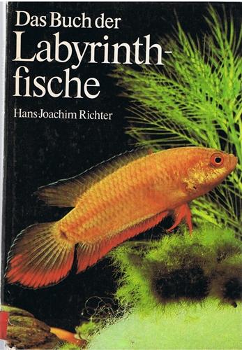 Das Buch der Labyrinthfische 1. Auf.