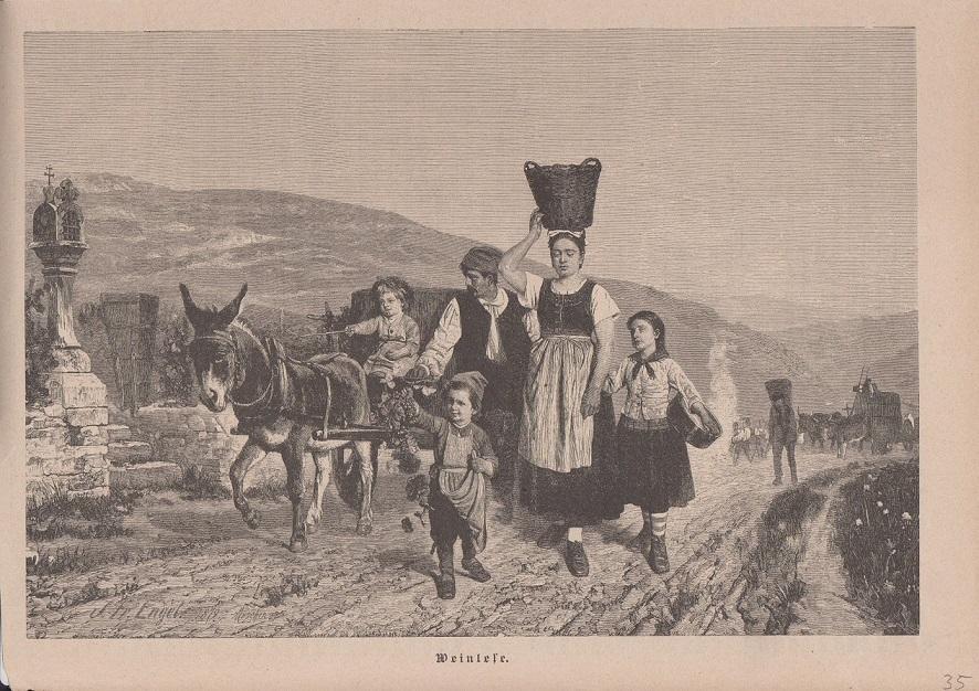 Wein - Weinlese Holzstich