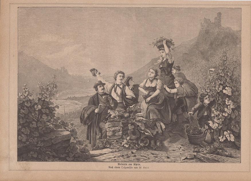 Wein - Weinlese am Rhein Holzstich Nach einem Oelgemälde von W. Kels