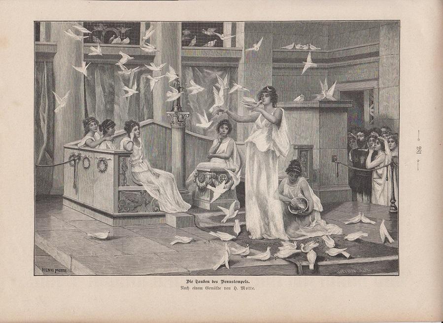 orig. Holzstich Die Tauben des Venustempels - Tauben Nach einem Gemälde von H. Motte