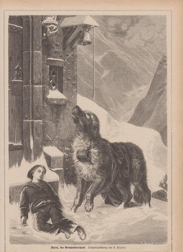 orig. Holzstich Berry der Bernhardinerhund - Hunde Originalzeichnung von C. Clasen