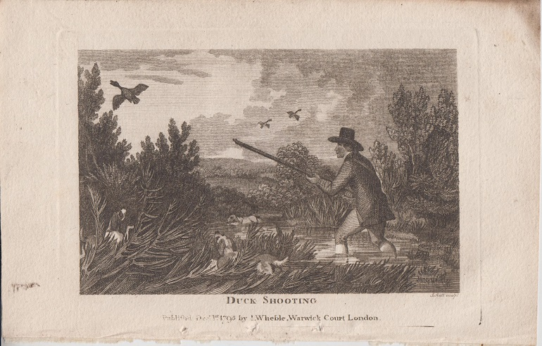Orig. Holzstich - Duck Shooting. Fig 34.