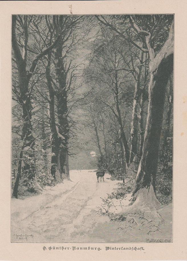 Orig. Holzstich: Winterlandschaft. O. Günther-Naumburg.