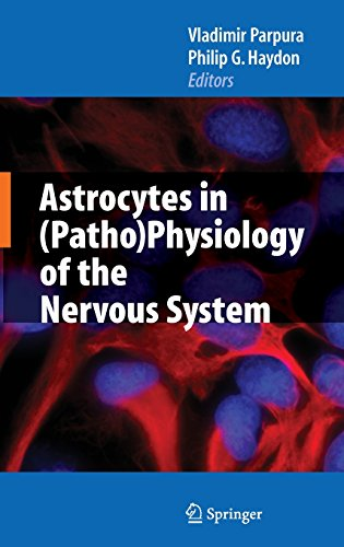 Astrocytes in (Patho) Physiology of the Nervous System. first Edition