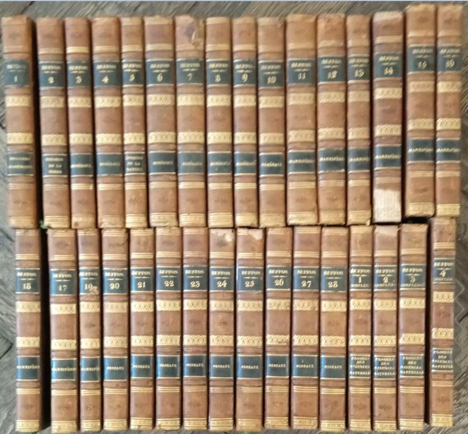 Oeuvres complètes de Buffon - 32 Bände ( 28 Bände plus 4 Ergänzungsbände ) - Histoire des Progres des Sciences Naturelles depuis 1789. mises en ordre et précédées d