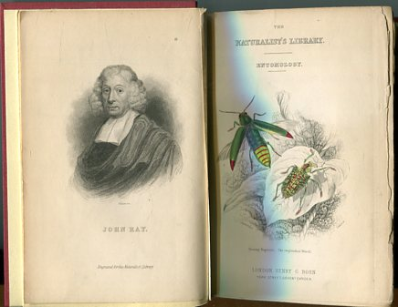 The Naturalist´s Library - Vol. XXXIII Entomology. Beetles by James Ducan. first Edition
