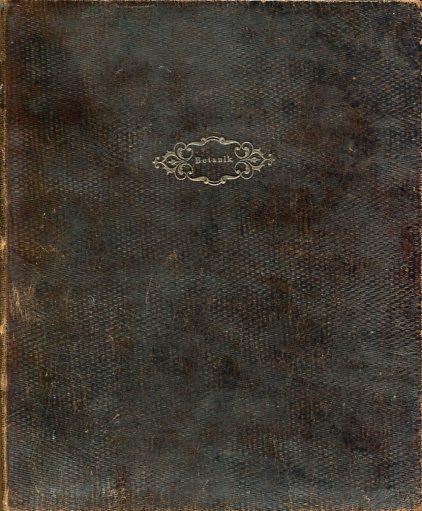 Tafelband zu Bischoff´s Lehrbuch der Botanik. Abbildungen zum Lehrbuch der allgemeinen Botanik. Erstauflage, EA