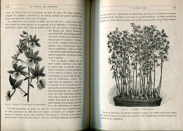 Le Journal des Orchidées - Vol. 3. Guide pratique de Culture. 3me Annee