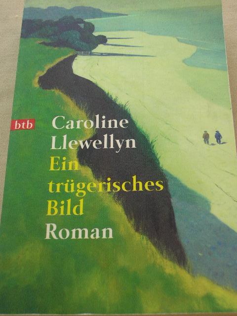 Ein trügerisches Bild : Roman. Deutsch von Anne Rademacher und Birgit Moosmüller, Goldmann 72493 : btb Genehmigte Taschenbuchausg., 1. Aufl.