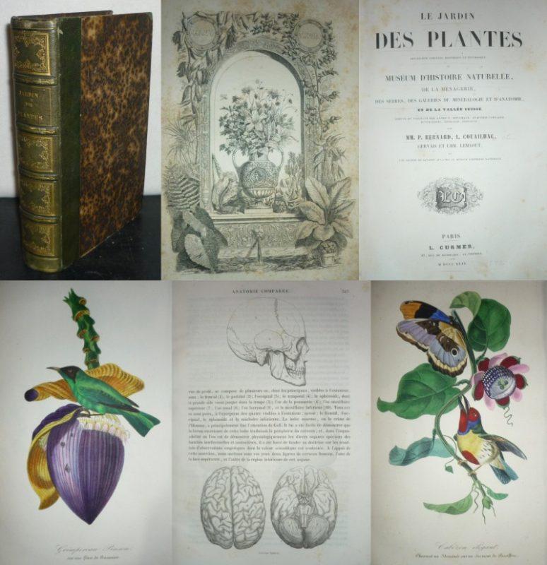 Le jardin des plantes. Description complète, historique et pittoresque du Muséum d