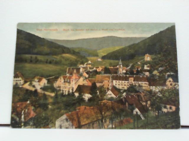 Foto-AK Bad Herrenalb, Blick ins Gaistal mit Horel z. Post und Kurhaus; coloriert