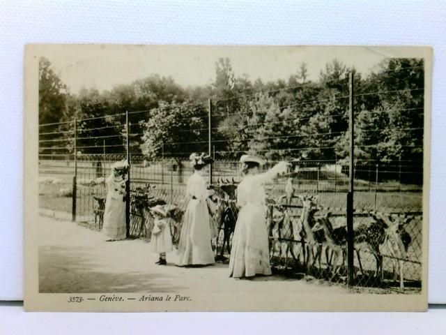 seltene AK Genève - Ariana le Parc; junge Damen beim Füttern der Rehe; 1909