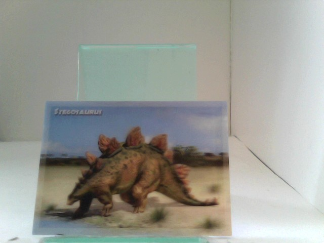 3D Ansichtskarten/ Postkarten Stegosaurus