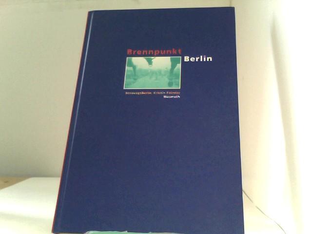 Brennpunkt Berlin. Politik, Stadtentwicklung, Kultur, Umweltschutz