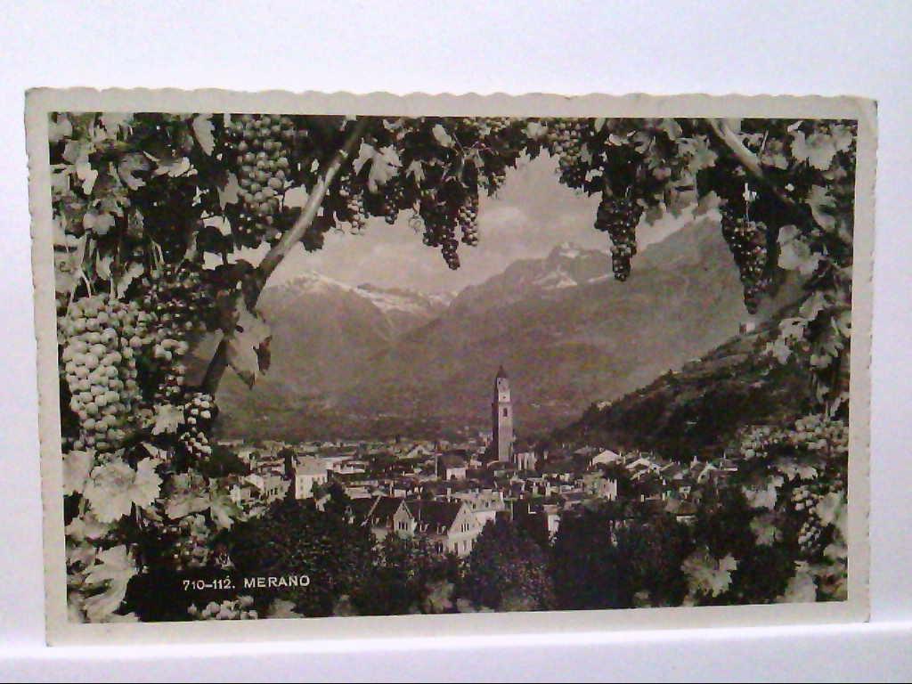 AK Merano/Südtirol, Italien, Panoramaansicht durch das Weinlaub/Reben aufgenommen, Gelaufen.