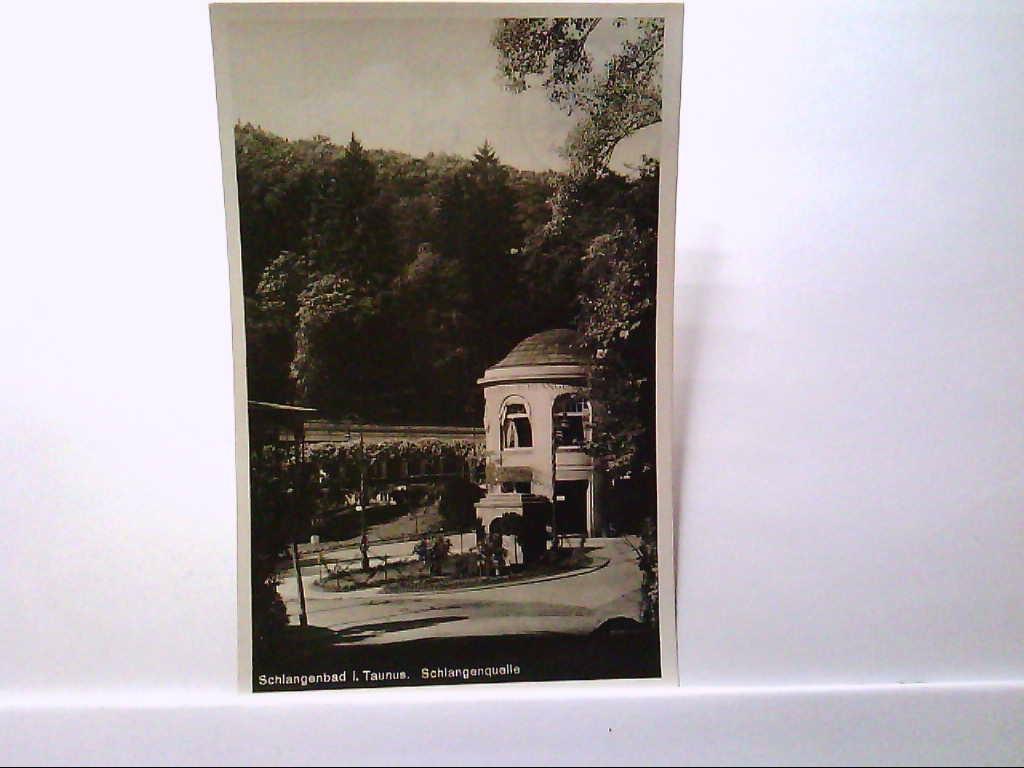 AK Schlangenbad im Taunus, An der Schlangenquelle, Panoramaansicht, Echt Foto, 1932, Gelaufen.
