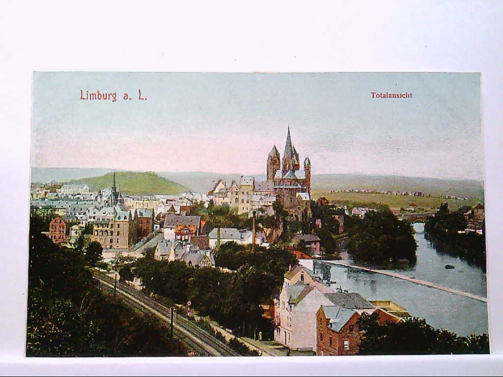 AK Limburg an der Lahn, Totalansicht, Panorama, Coloriert, Künstlerkarte, Ungelaufen.