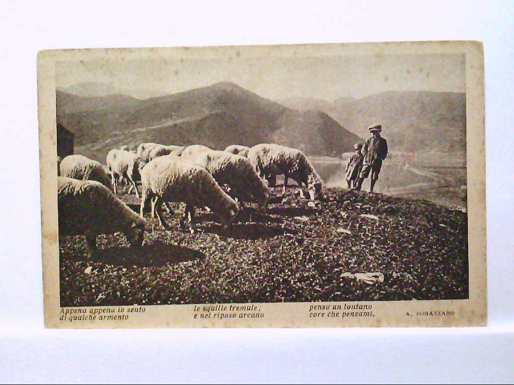 AK Italien, Appena io sento di gualche armento, Schafherde mit Hirtenkinder, Panorama.