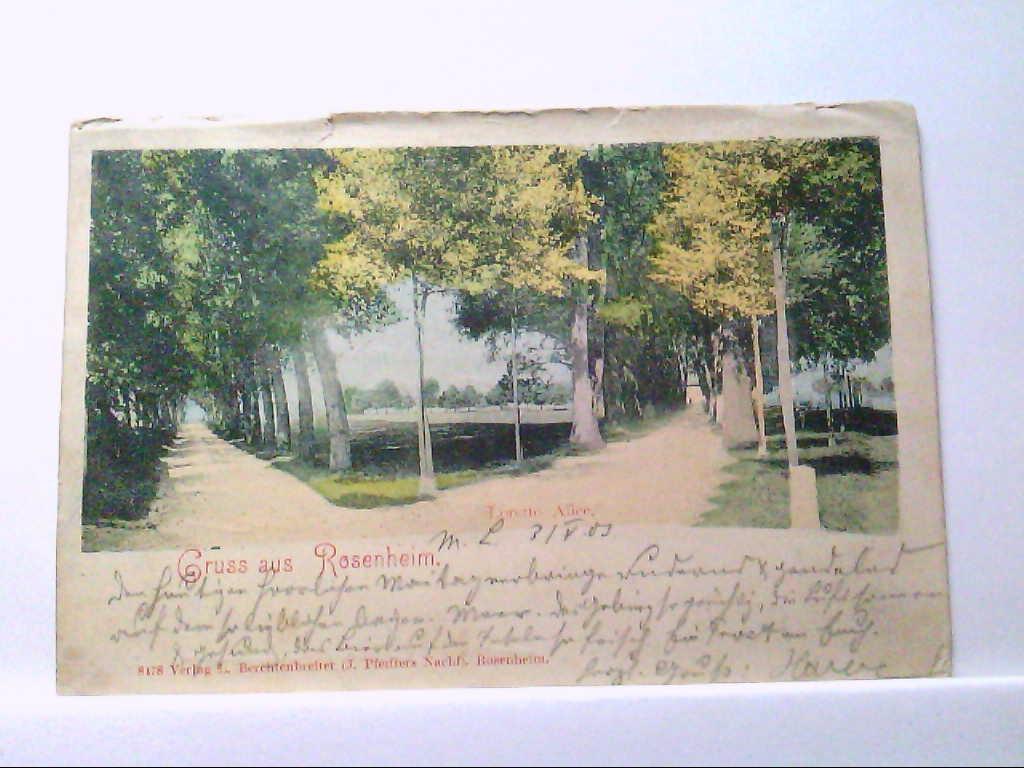 AK Rosenheim in Bayern, Gruss aus Rosenheim, Loretto Allee, Panorama.