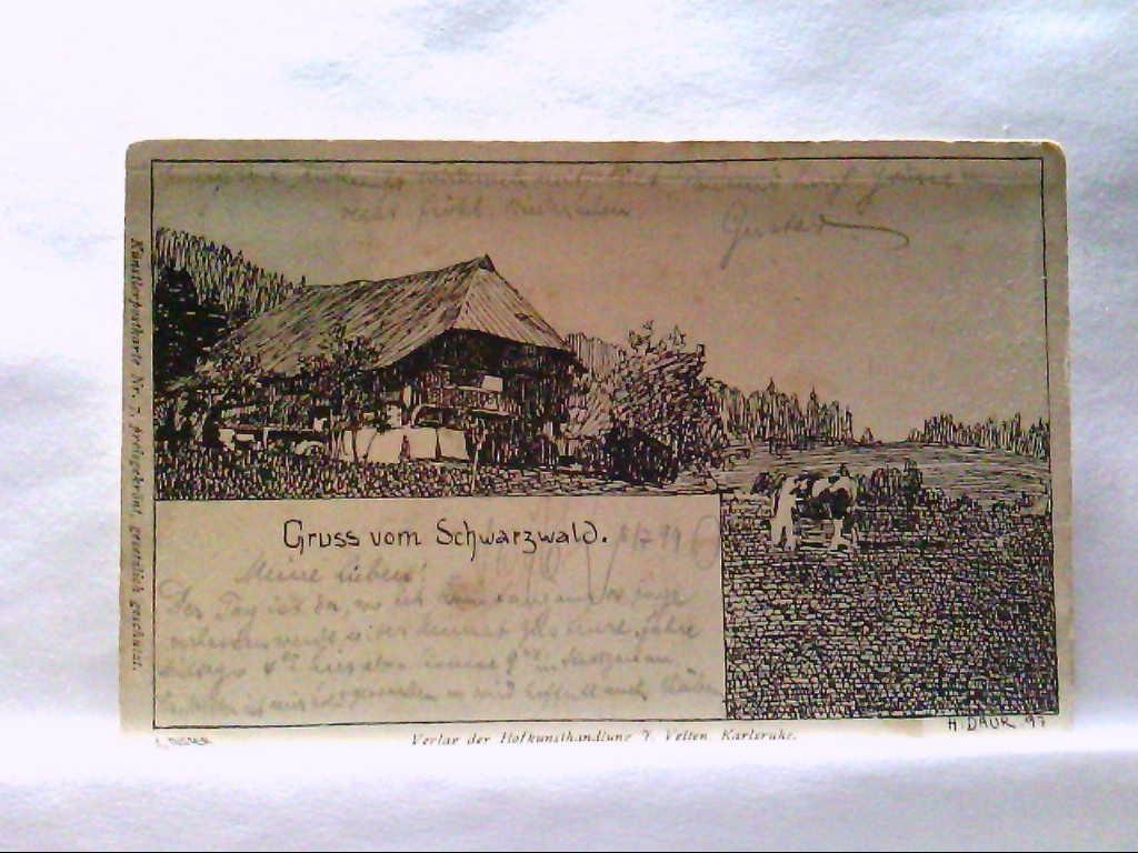 AK Schwarzwald, Gruss vom Schwarzwald, Künstlerkarte von H. Daur.