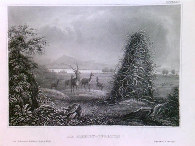 Original Stahlstich / Steel engraved print, Die Elkhorn-Pyramide, Stahlstich um 1850. Montana: Gezeigt wird im Vordergrund ein Rudel Hirsche, daneben die Pyramide aus Geweihen. Im Hintergrund fließt der Missouri.