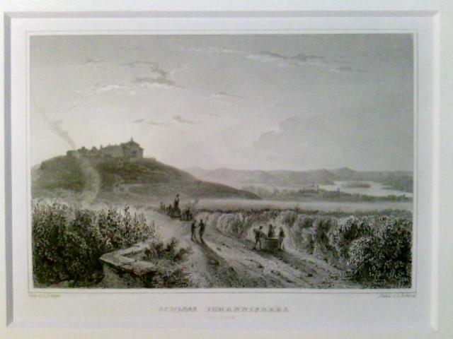 Schoss Johannisberg am Rhein, im Passepartout,  in Folie verpackt,