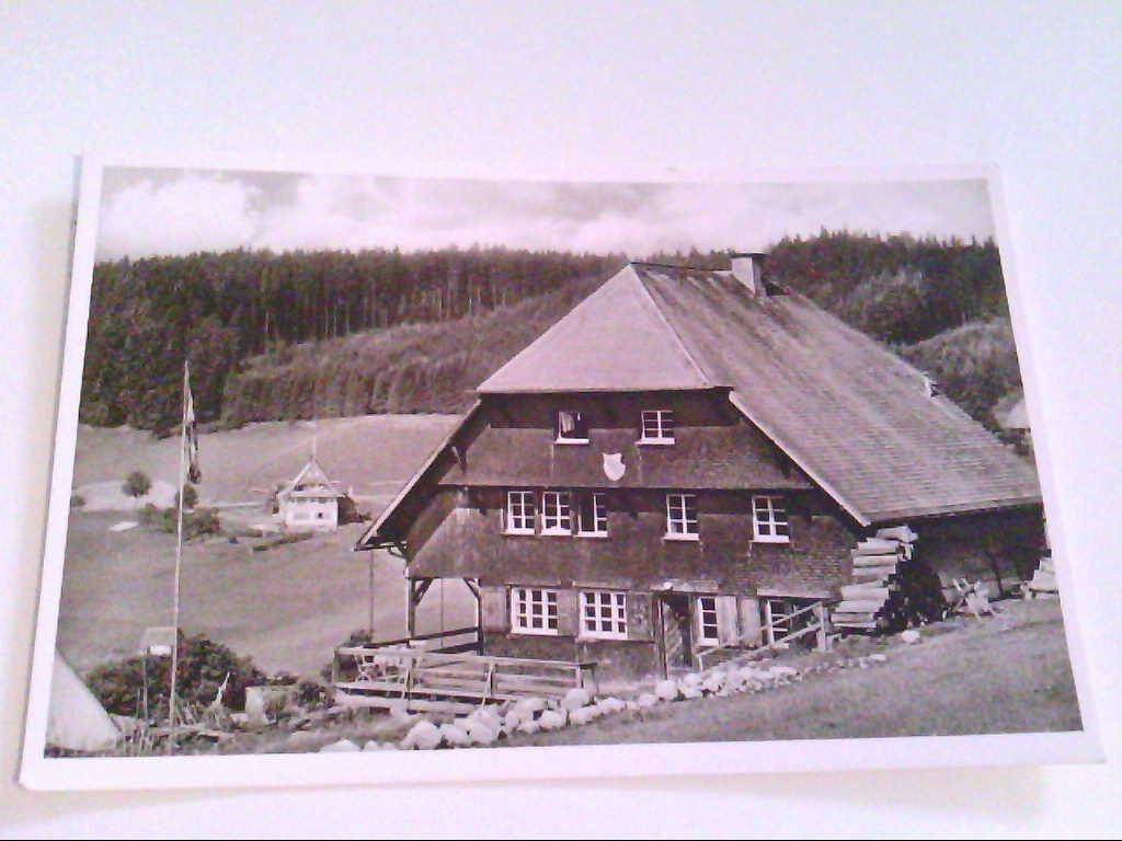 AK. Echte Photographie. Schluchsee ( Schwarzwald ). Brisgoven-Hütte. Hinterhäuser.