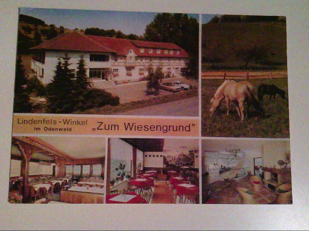 """AK. Lindenfels - Winkel. """"Zum Wiesengrund"""". Mehrbilder. Außenansicht. Innenräume. Pferde."""