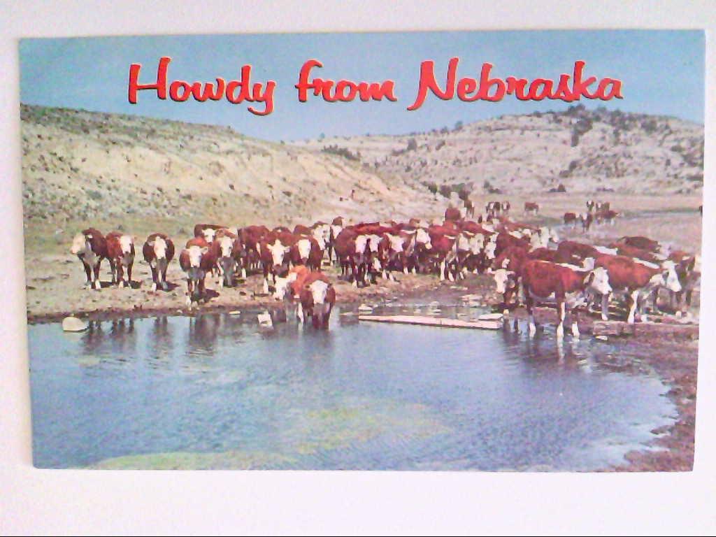 AK. Nebraska. Howdy Farm.