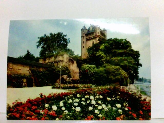 AK Eltville im Rheingau. Die Burg mit Rosenanlagen. Gebäudeansicht, Parkanlage