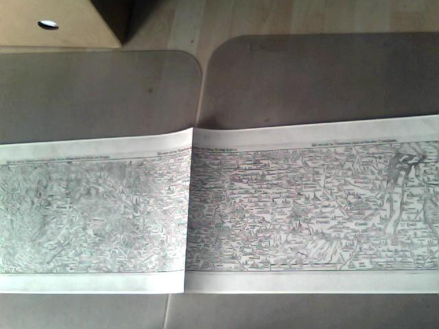"""Rheinlaufkarte bestehend aus 3 zusammenhängenden Tafeln: """"Die erste Tafel des  in der vergriffen wirdie Eidgenossschafft das Elsäss und Brisgow"""", """"Die ander tafel des Rheinstroms begreifend die Pfalz Westrich Eyfel etc"""", """"Die drit tafel des Rheinstroms inhaltend das nider Teutschlande"""" Bibliophiler Sonderdruck der Karte aus dem 16. Jahrhundert, Masse: ca. 94 cm x 30,5 cm"""
