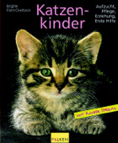 Katzenkinder 2., Aufl.