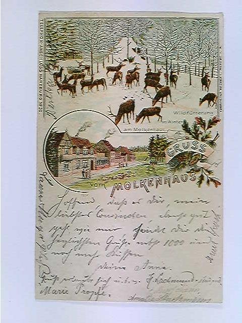 AK Molkenhaus, Harzburg, Lithografie, Bahnstempel Halle (S)-Löhne Zug 238 19.8.1897