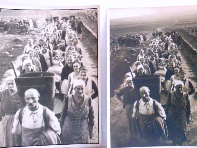 Set 2 x Fotos Gang zur Weinlese. Aufnahmen von C. Röder / Bernkastel / Mosel. Männer und Frauen mit Traubenbottichen auf dem Weg Weinlese, Weinberg, alte Fotos