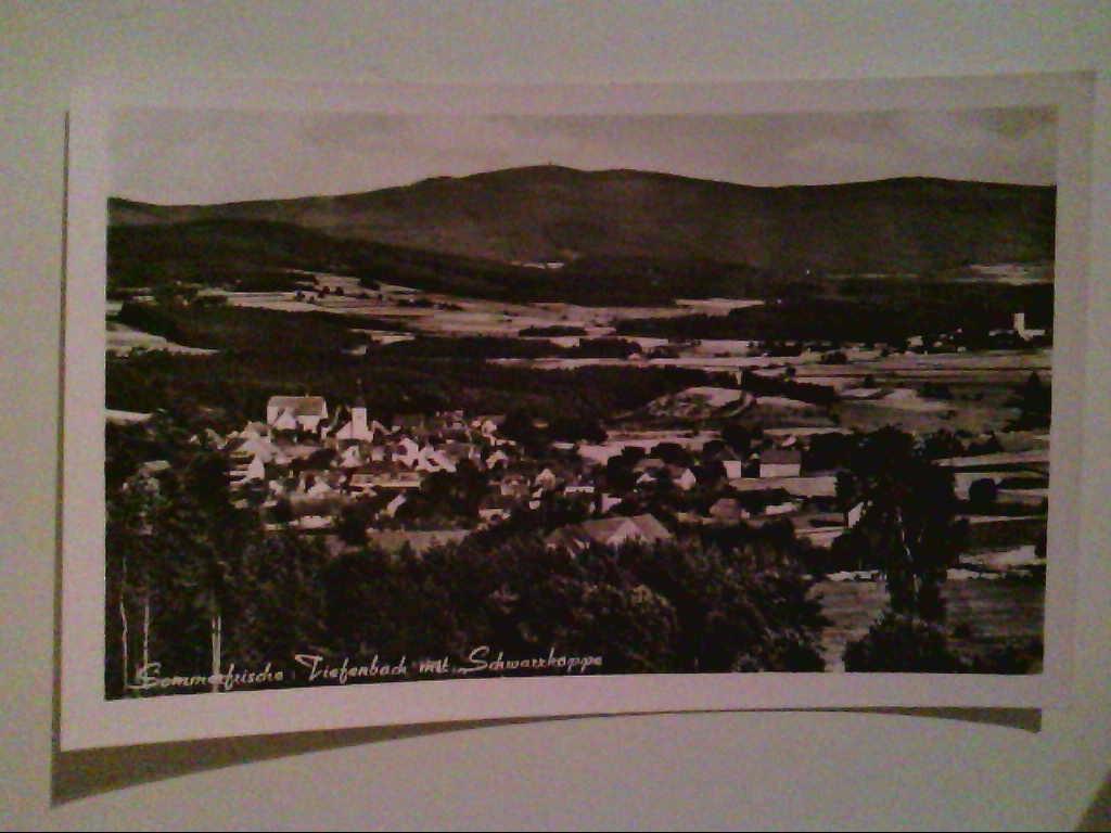 AK. Sommerfrische Tiefenbach. Schwarzkoppe. Panorama. Echtes Photo. s/w.