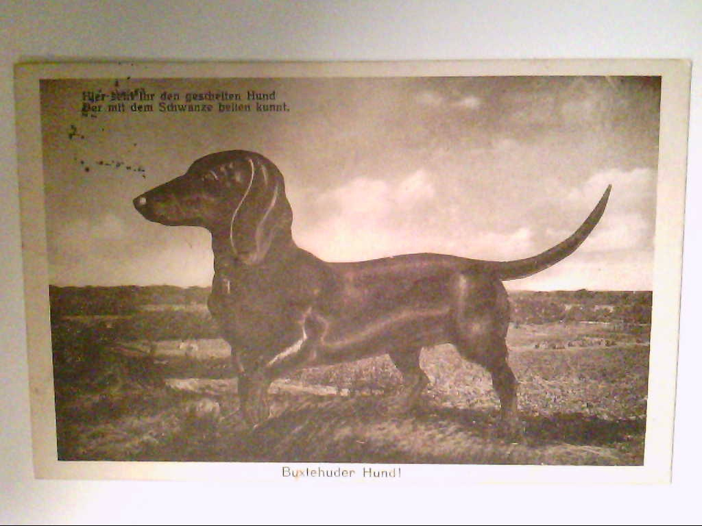 Buxtehude. Buxtehuder Hund. AK.