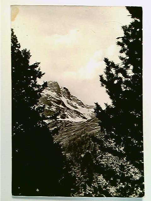 Arnoga Valdidentro Sondrio, Il Pizzo Verva, AK, gelaufen 1956