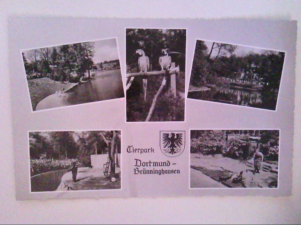Dortrmund - Brünninghausen. Mehrbildkarte mit 5 Abb. Robben u.a. AK.
