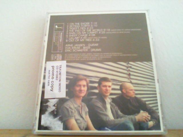 Arne Jansen Trio: Younger Than That Now