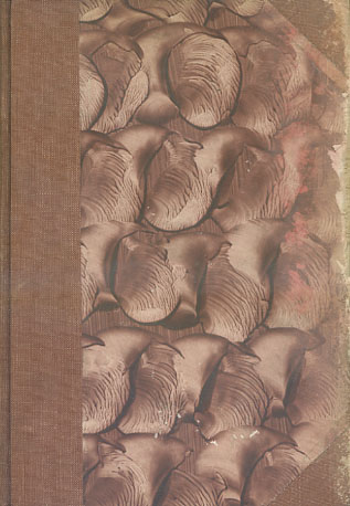Bericht über die 31. [einunddreissigste] Versammlung der Ophthalmologischen Gesellschaft Heidelberg 1903 redigirt durch A. Wagenmann. Originalausgabe (KEIN REPRINT !!!)