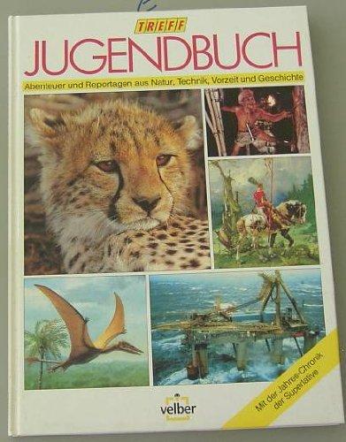 Treff-Jugendbuch 96.