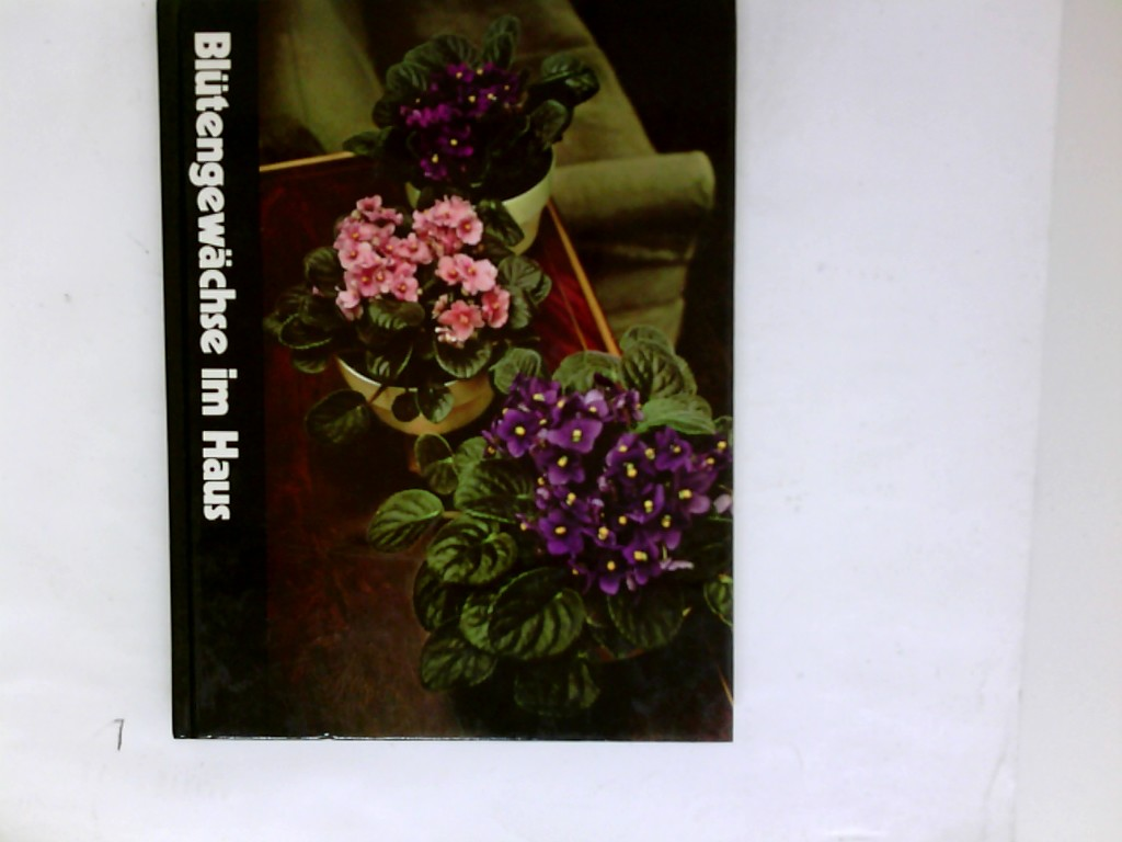 Blütengewächse im Haus