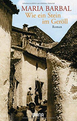 Wie ein Stein im Geröll : Roman. Aus dem Katalan. übers. von Heike Nottebaum. Mit einem Nachw. von Pere Joan Tous Taschenbucherstausg.