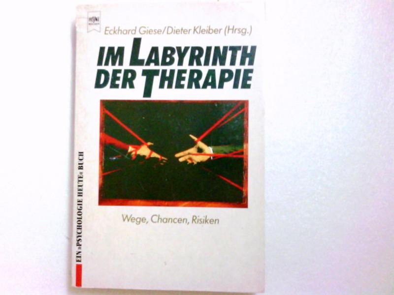 Im Labyrinth der Therapie : Wege, Chancen, Risiken / Eckhard Giese ; Dieter Kleiber (Hrsg.) / Heyne-Bücher / 17 / Heyne-Lebenshilfe ; 103