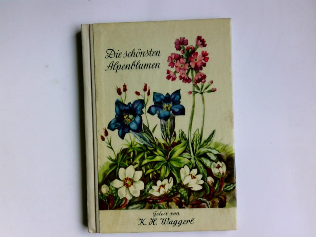 Die schönsten Alpenblumen. Mila Lippmann-Pawlowski. Geleit von Karl Heinrich Waggerl. Aquarelle von Mila Lippmann-Pawlowski 6. Aufl.