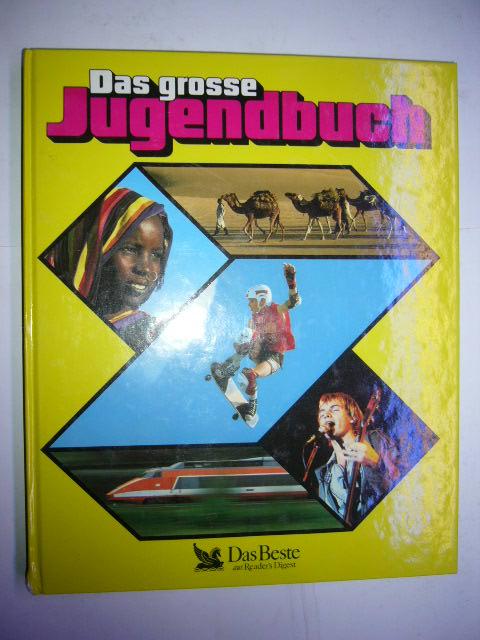 Das grosse Jugendbuch 29. Folge